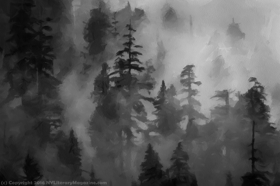 Dark Forest Sad Deep Poems about Death - NY Literary Magazine