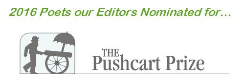 Nominated for the Pushcart Prize by the NY Literary Magazine