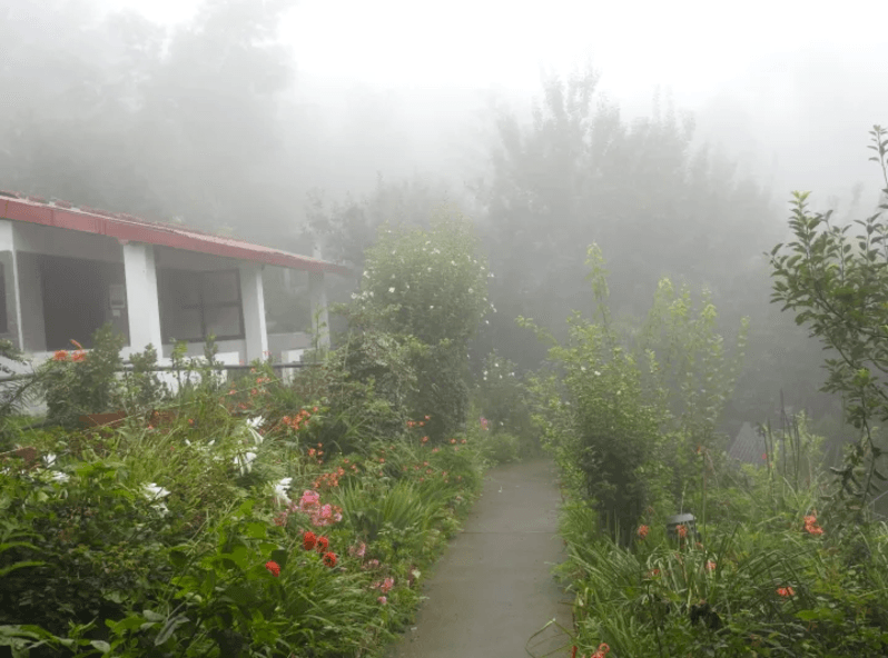 Himalayan Writing Weekend + Kumaon