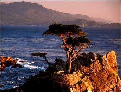 Monterey Writer Retreat