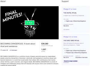 Book Crowdfunding Campaign Example, Becoming Dangerous