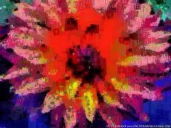 Flower Abstract Modern Art